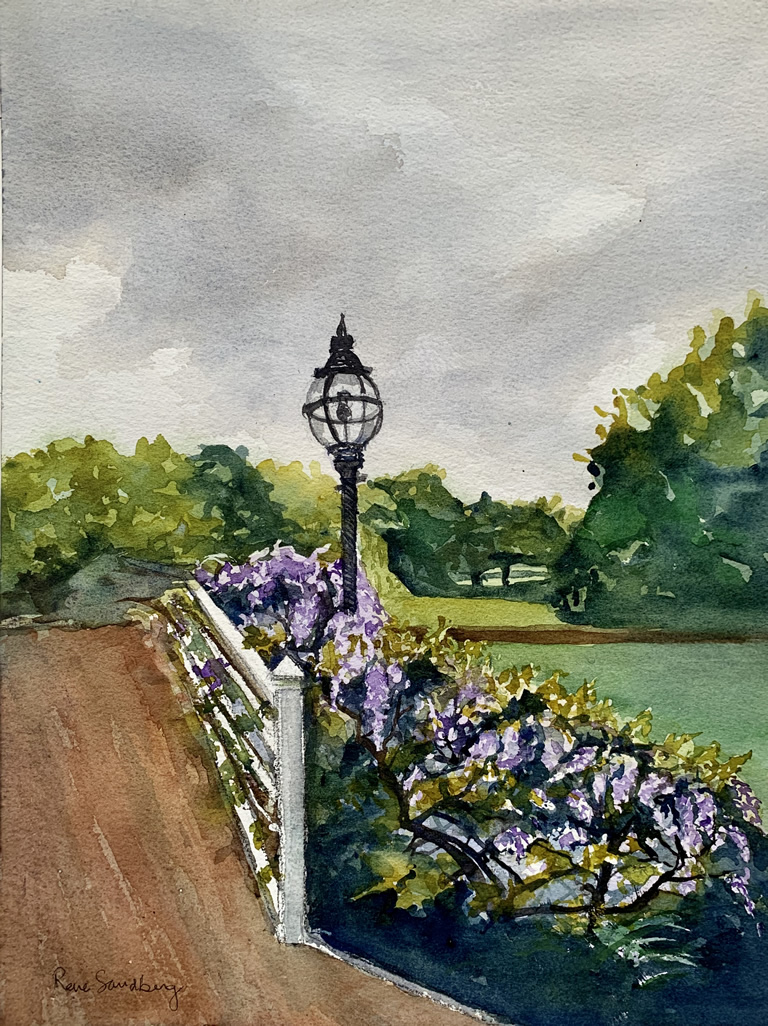 Walking with Wisteria Landscape Watercolour Painting by Rene Sandberg